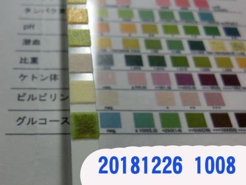 20181226-1008CIMG3726.jpg