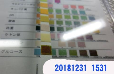 20181231-1536CIMG3838.jpg