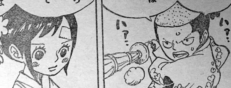 ワンピース モモの助 お玉