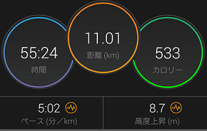 20181028run-result.png