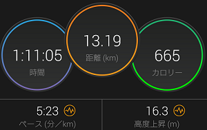 20181209run-result.png