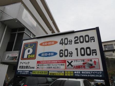 m-haru1.jpg