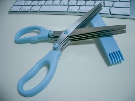 301202_Scissoers1.jpg