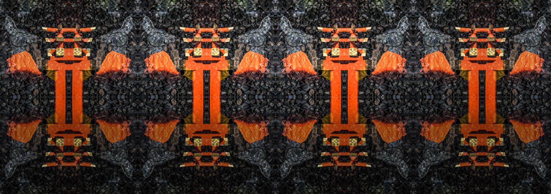 IMGP4626-Edit-Edit.jpg