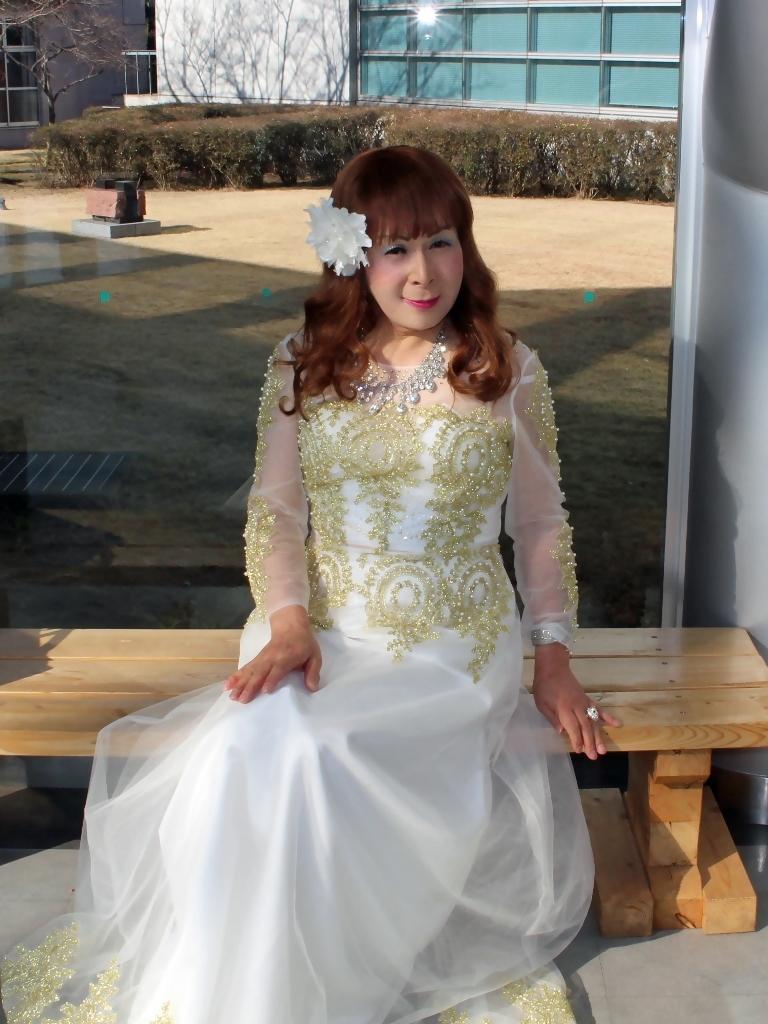 白地に金レース飾りドレスC(2)