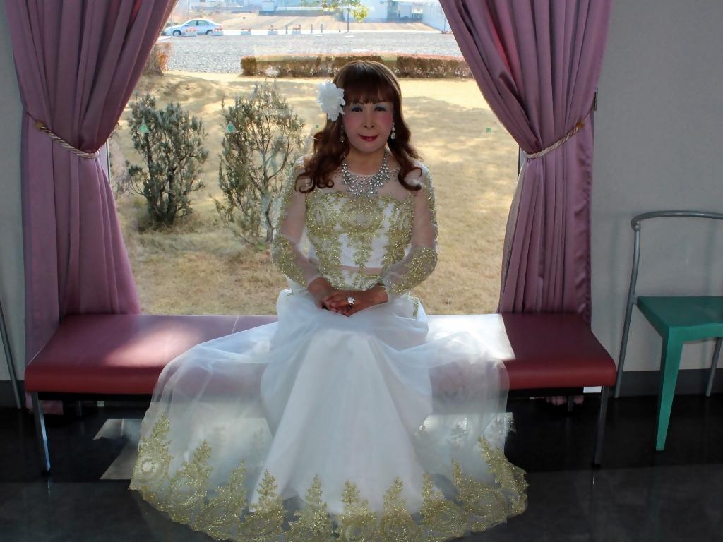白地に金レース飾りドレスC(7)