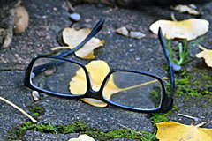 a pair of spectacles