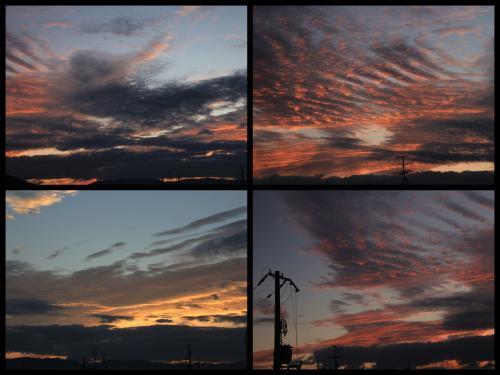 Collage_Fotor1101asa_convert_20181101100358.jpg