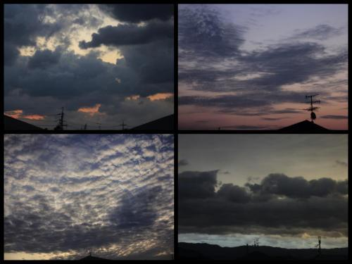 Collage_Fotor220as_convert_20190220083023.jpg