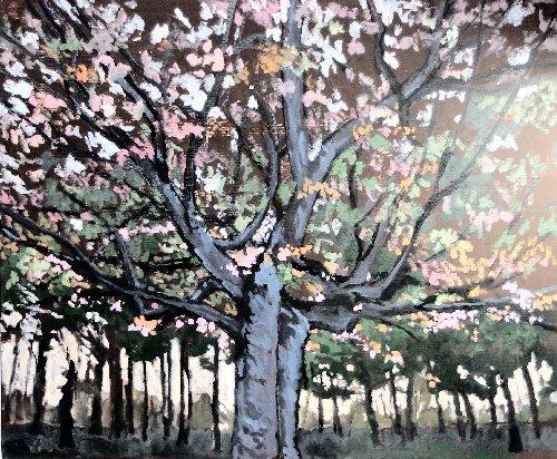 植物園木4