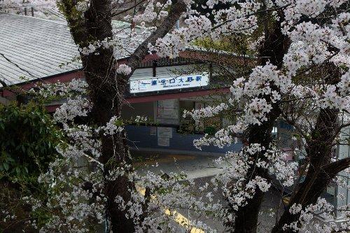 春室生寺駅3