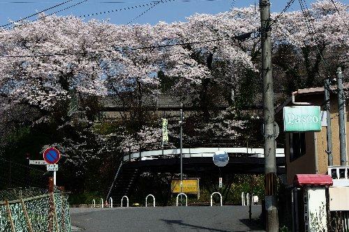 春室生寺駅5