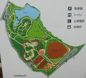 旭公園冒険2