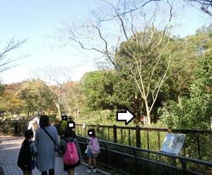 金沢動物初回10