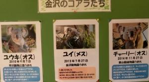 金沢動物初回16