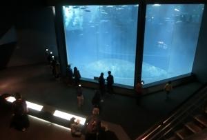 葛西水族園施設12