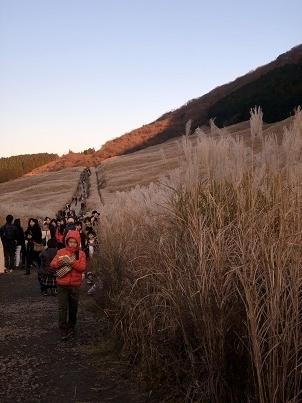 ススキの高原2