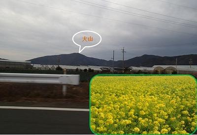 1田原の風景