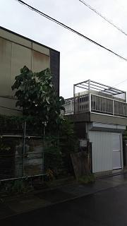 20180729台風(その6)