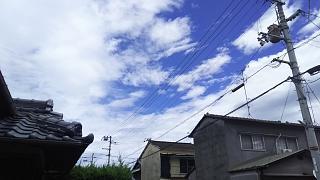 20180729台風一過(その1)
