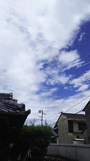 20180729台風一過(その2)