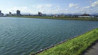 20180731野田池(その4)