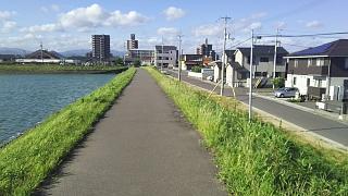 20180731野田池(その5)