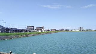 20180731午後の野田池(その5)