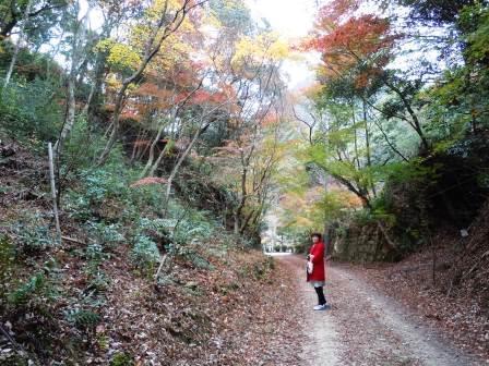 泉山磁石場和子さん13(2018-11-23)