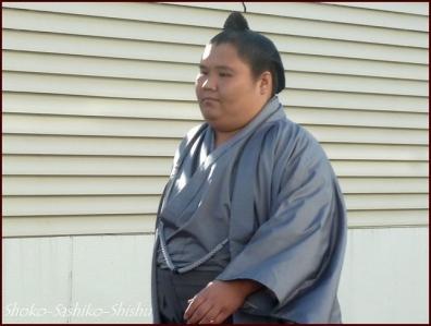 20190127 入り待ち 4  大相撲