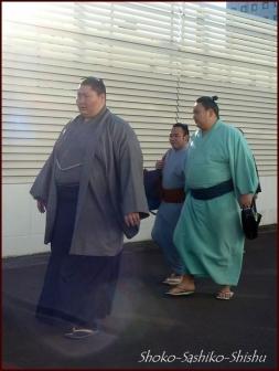20190127 入り待ち 8  大相撲