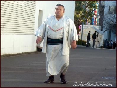 20190127 入り待ち 9  大相撲
