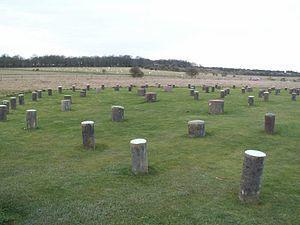 300px-Woodhenge_4_DB[1]
