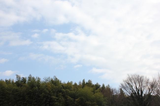 はっちちゃんプール1219 136