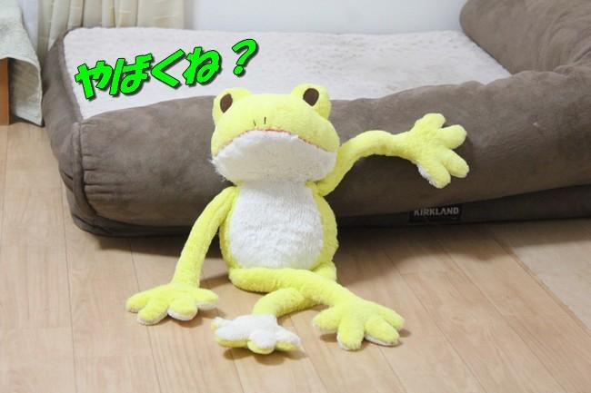 シュレッダー黄色カエル 025