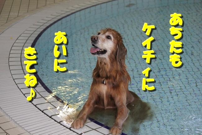 プールと表情 023