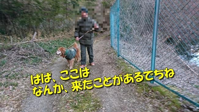 DSC_2216.jpg