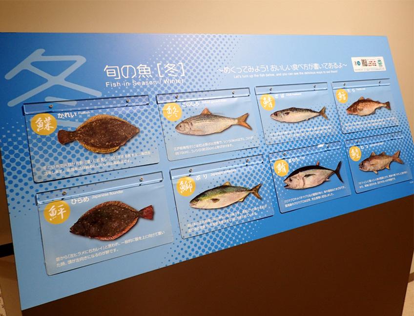 豊洲市場(5)