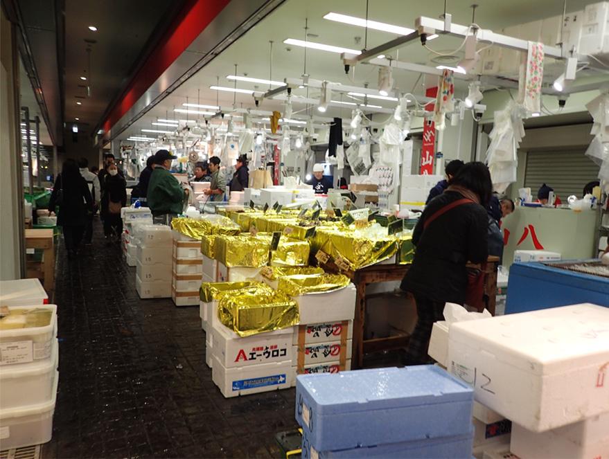 豊洲市場(11)