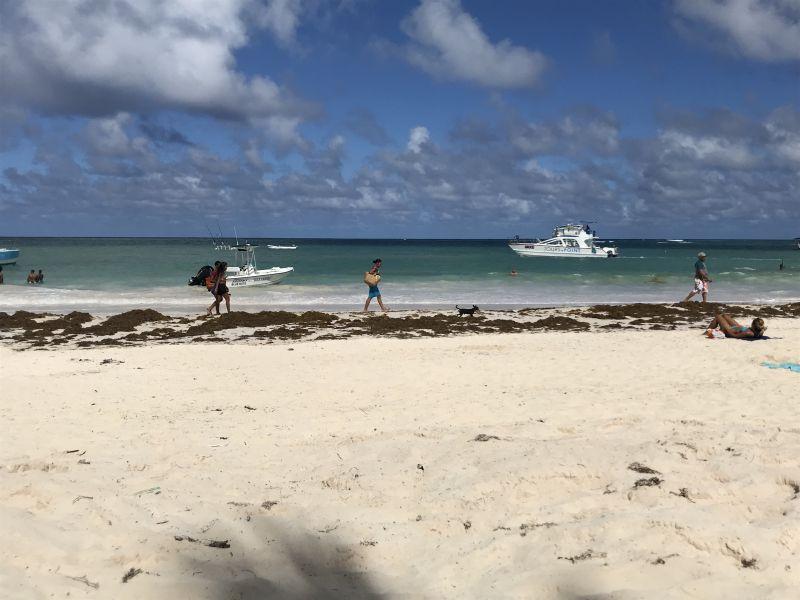 プンタカナビーチ