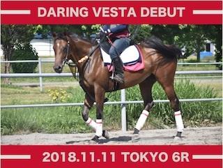 2018年11月2週 出資馬のレース結果