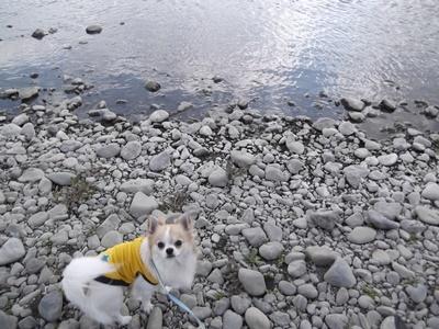 2012多摩川0