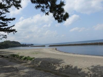 IMG_9419 今和泉海岸