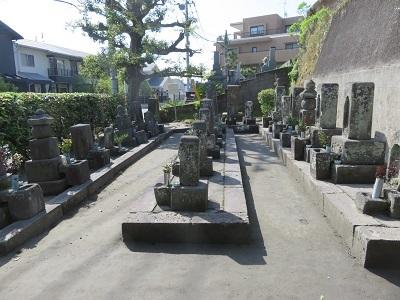 IMG_9665 西郷家の墓