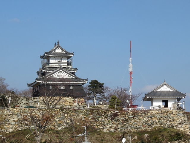 IMG_4040 浜松城