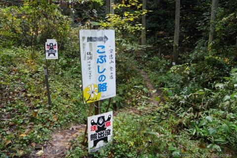 181113HOUDATSU_01.jpg