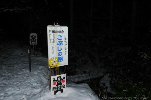 190101HOUDATSU_01.jpg