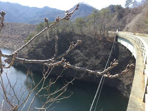20190224 荒川ダム (1)