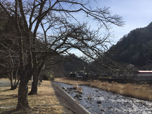 20190224 滝上市営駐車場 (2)