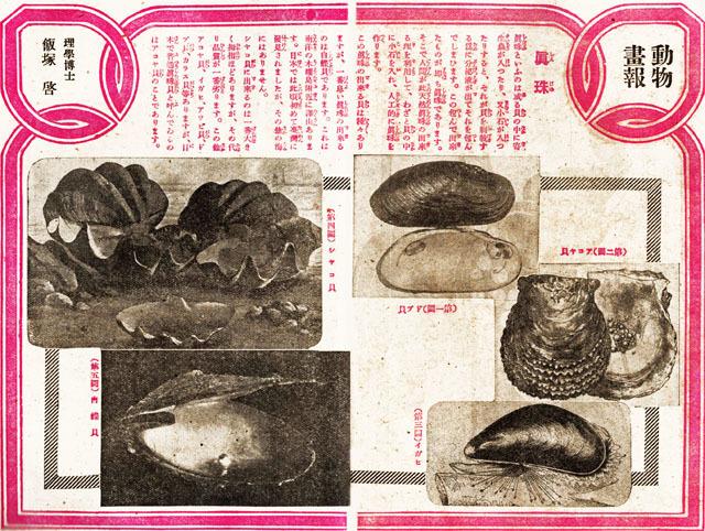 真珠1917aug